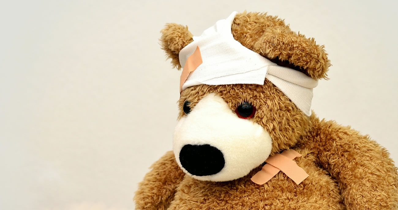 North-coast vascular bandaged bear