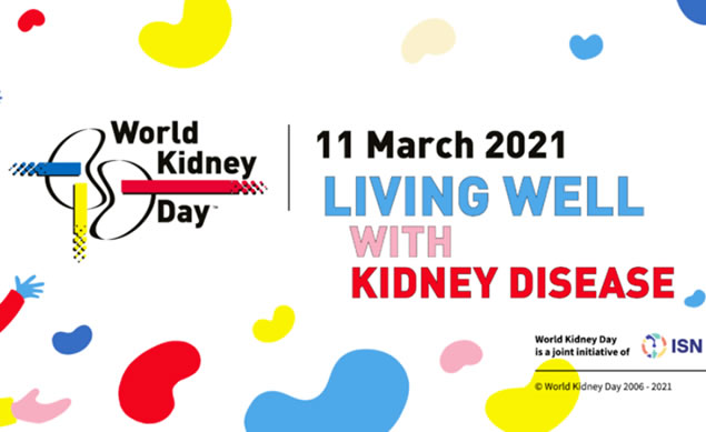 vascular kidney day